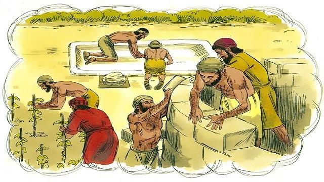 Storie della Bibbia: parabola dei lavoratori della vigna