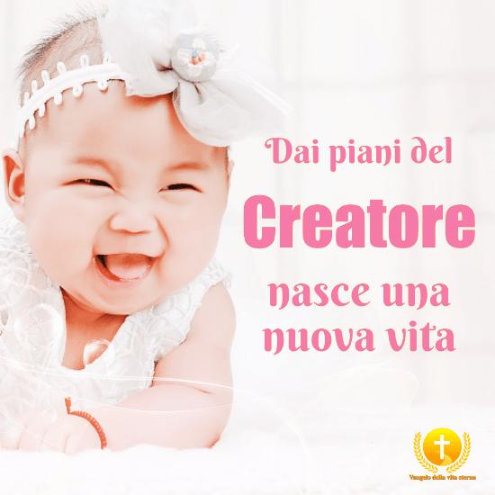 Dai piani del Creatore nasce una nuova vita