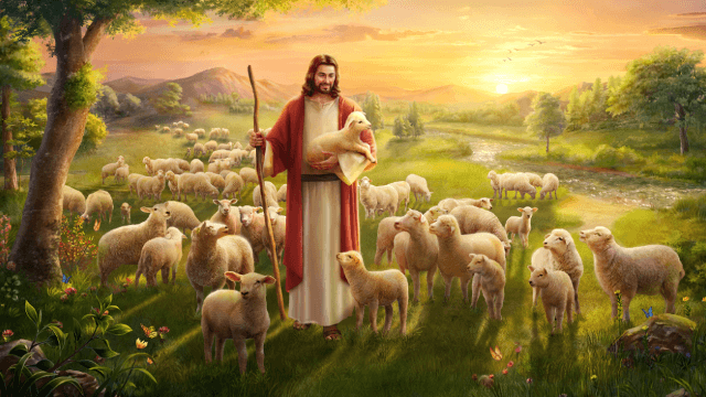 """Il vero significato di """"Dio vuole che tutti gli uomini si salvino, non volendo che alcuno perisca"""""""