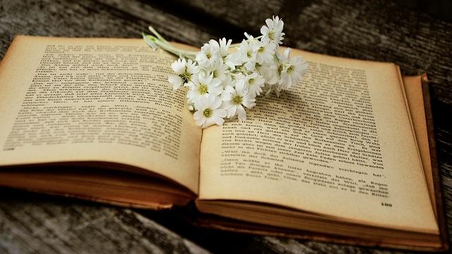 Studi biblici approfonditi padroneggia i tre elementi di leggere la Bibbia, sarai più vicino a Dio