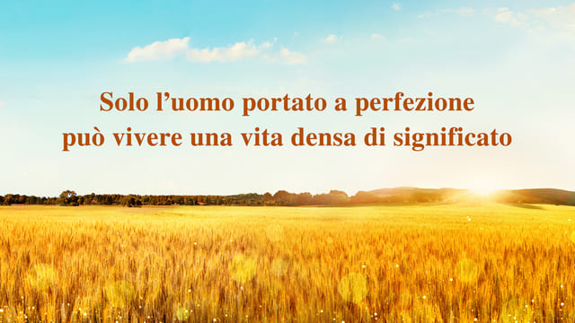 Solo l'uomo portato a perfezione può vivere una vita densa di significato