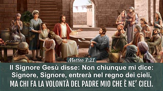 Matteo-7_24