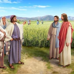 I farisei condannarono il Signore Gesù